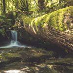 pedra-e-auga