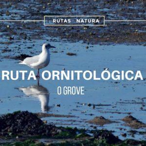 ruta_ornitologica_ogrove
