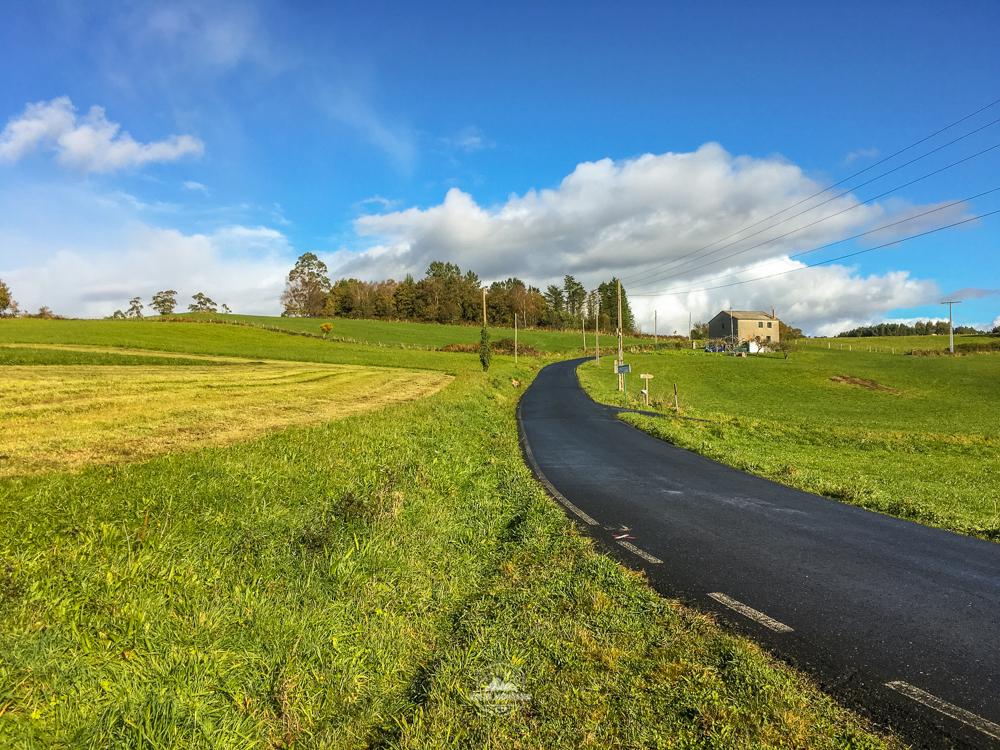 camiño do medievo