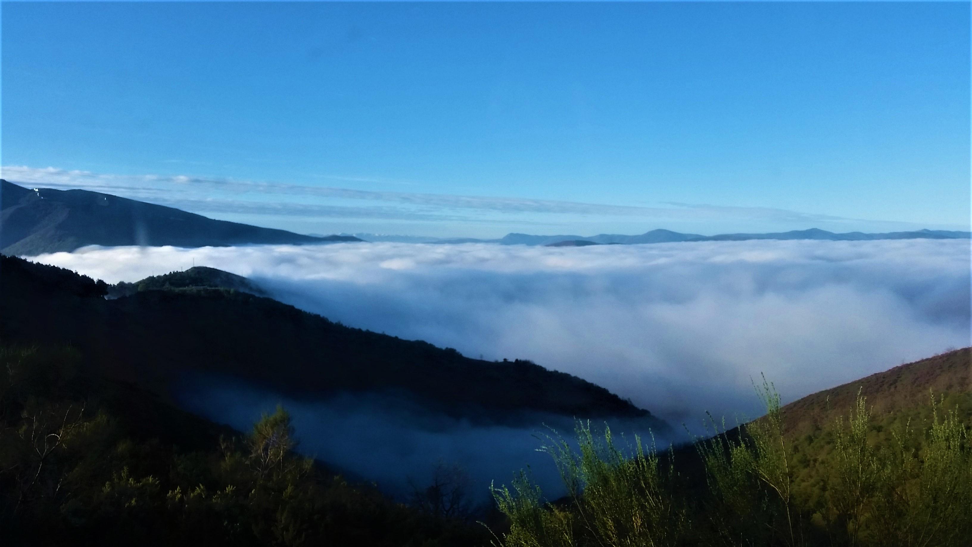 niebla en ancares